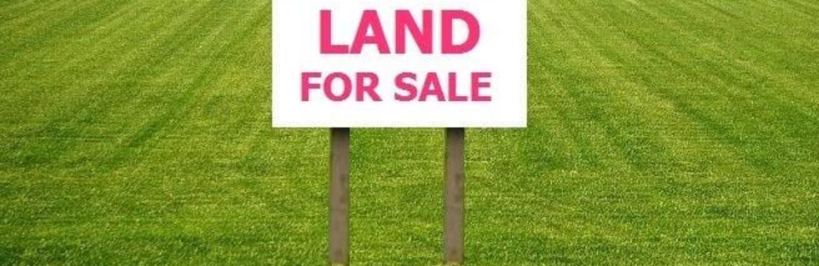 What To Look For In The Land You Are Purchasing?