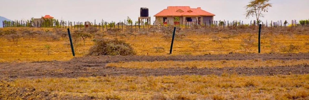 Guide to buying land in Kenya. 4 Key steps [Guide]