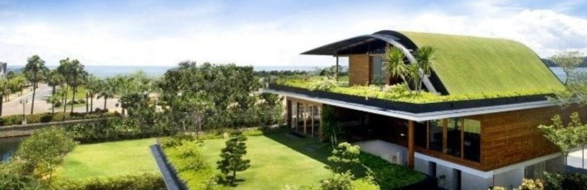Green Roof Detail: All About Green Roof.